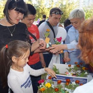 socialnay_yarmarka_33.jpg