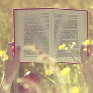 5 книг, которые обязательно нужно прочитать летом