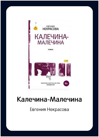 Макет книги 65