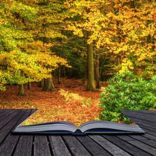 Игра-путешествие «Прощание с осенью»