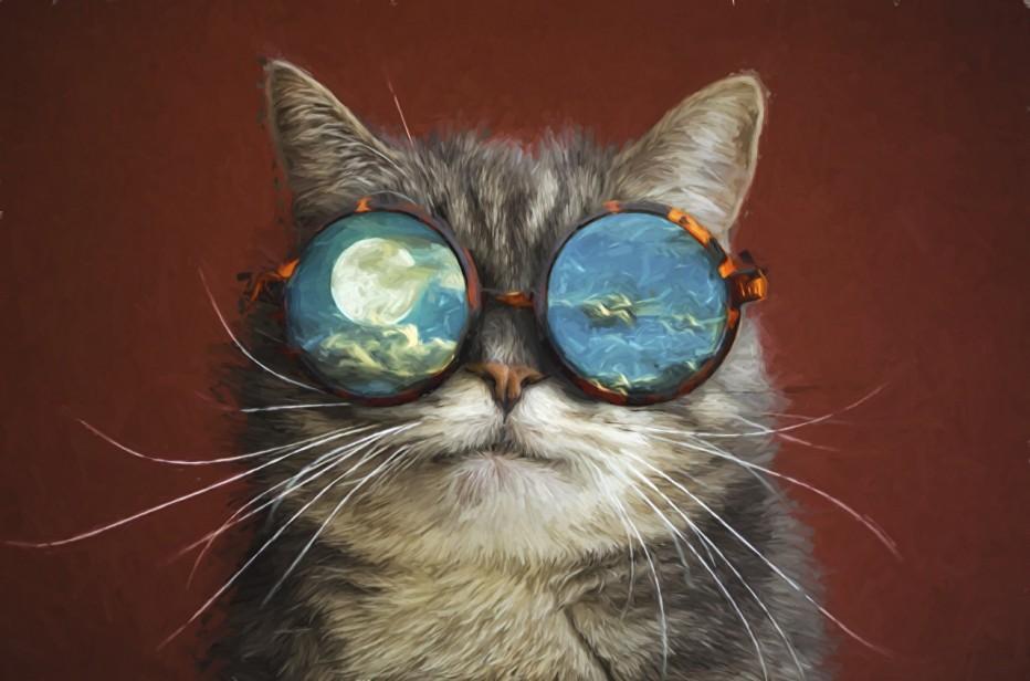В библиотеке-филиале №15 прошла кото-викторина, посвященная Дню кошек в России