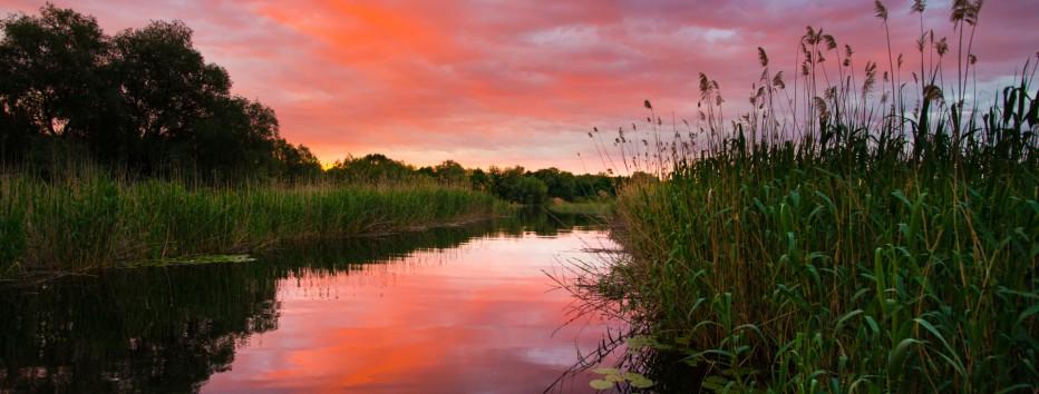 Краеведческий час-экскурс «Знакомимся: Астраханский государственный биосферный заповедник»