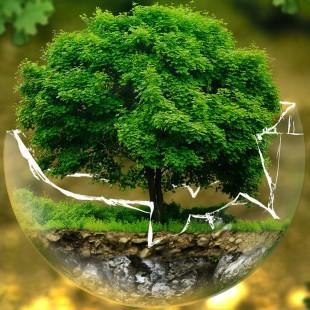 «Защитим природу – сохраним себя» – День информации, посвящённый Всемирному дню окружающей среды