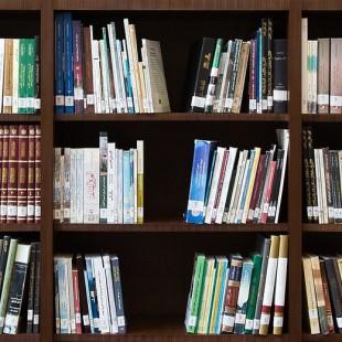 Библиотечный урок «Искусство быть читателем»