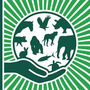 Экологический экскурс «Эти забавные животные»