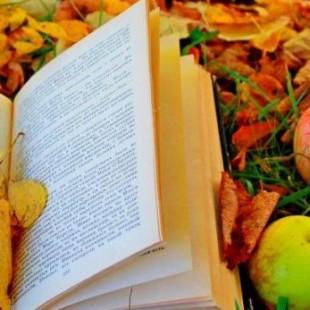 «Осенних  красок хоровод»