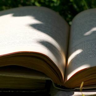 Литературный пикник «Кто украсил все вокруг?»