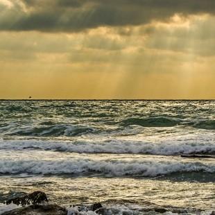 Час информации «У моря много разных лиц»