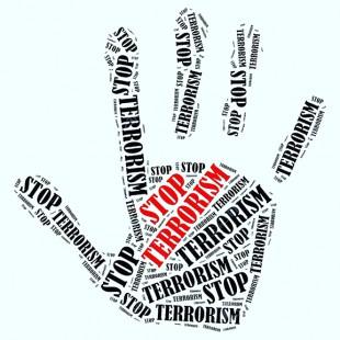Урок безопасности «Будущее – без терроризма!»