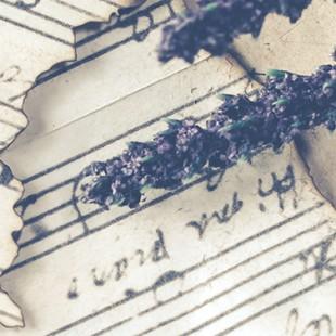 Литературно-музыкальный вечер «Весенние мелодии»